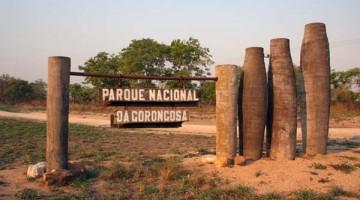 O renascer do Parque Nacional da Gorongosa