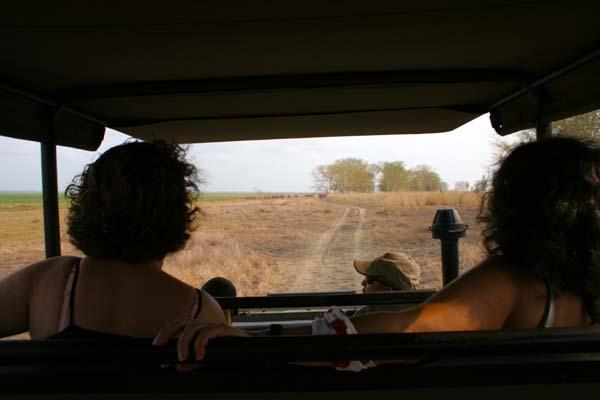 Safari na Gorongosa