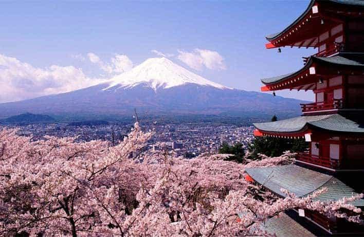 Amendoeiras em flor, Japão