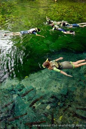 Snorkelling no Aquário Natural