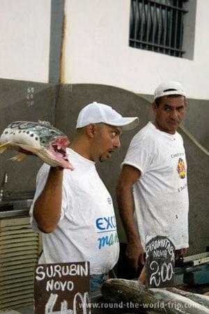 Vendendo peixe em Belém, norte do Brasil