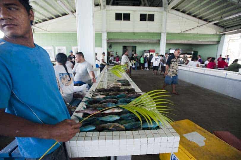 Apia fiskur markaður