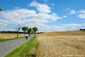 Ciclista nos arredores de Aarhus, norte de Jutland, Dinamarca