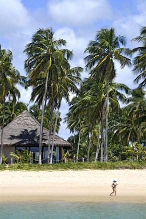A caminho da praia do Gunga, no litoral sul de Alagoas