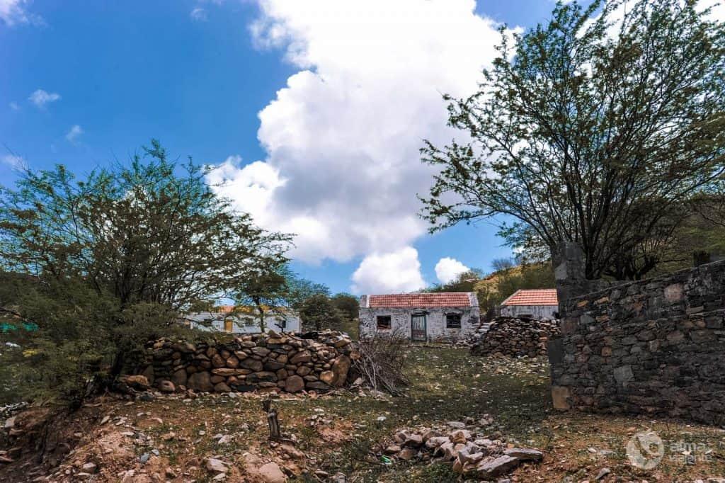 Fazenda Tarrafal