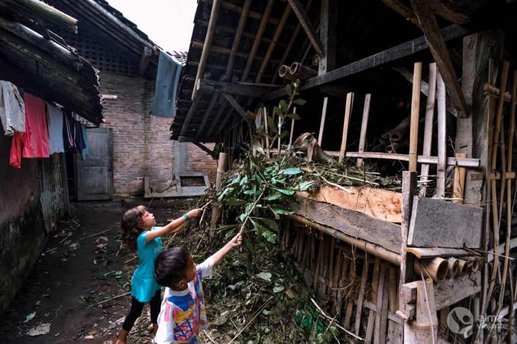 Crianças numa aldeia de Borobudur