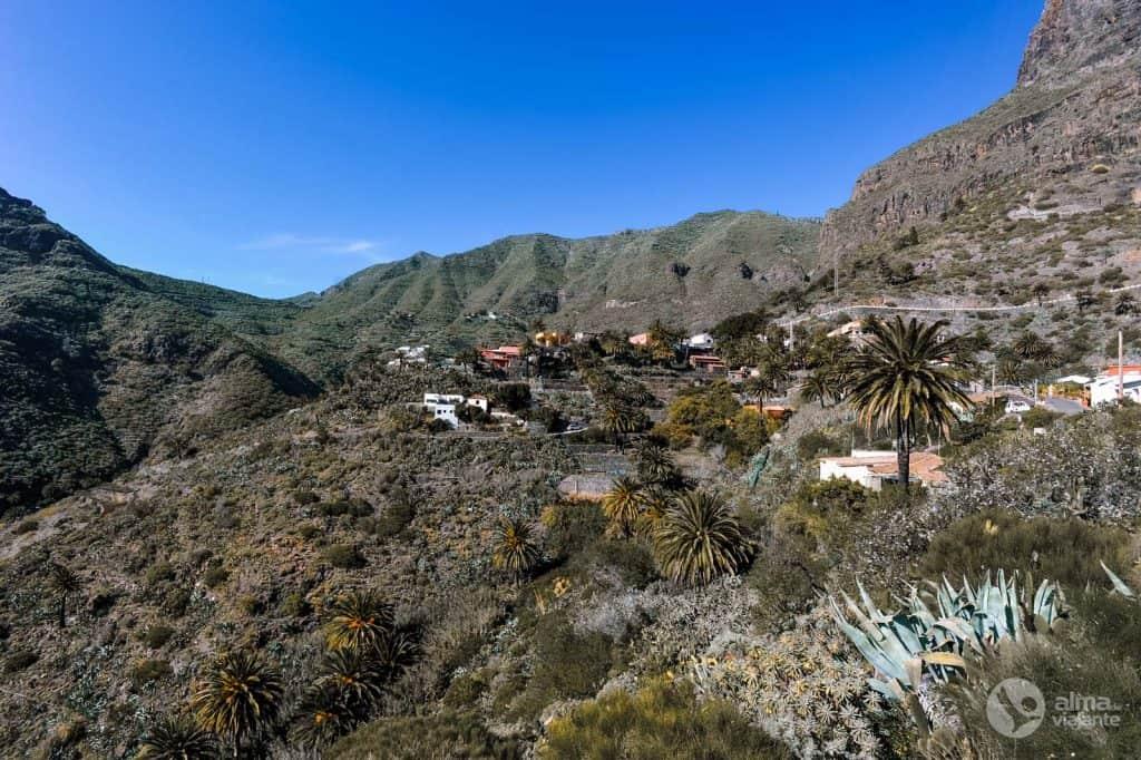 Skripta na Tenerifeu: Masca