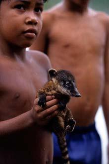 Barn í Alter-do-Chão, vel í Amazon regnskóginum