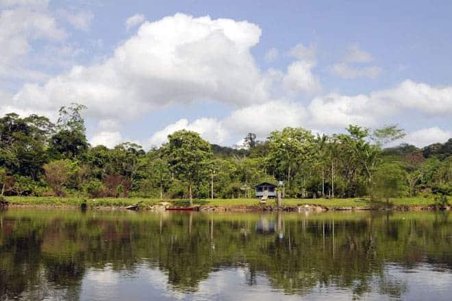 Margens do rio Amapari