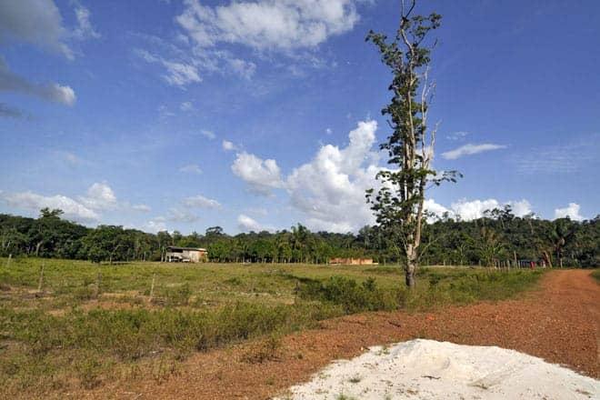 Local onde vai nascer um hotel de selva nas margens do rio Araguari