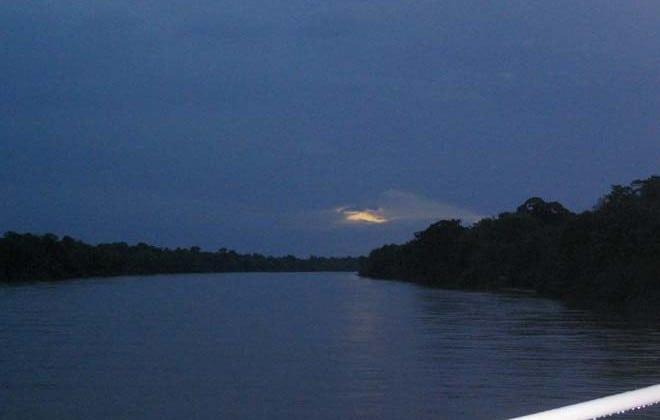 Bicho-homem à solta na Amazónia