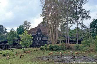 Templos de Angkor, próximo de Siem Riep, Camboja