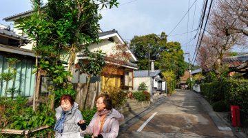 Um dia (perfeito) em Arashiyama