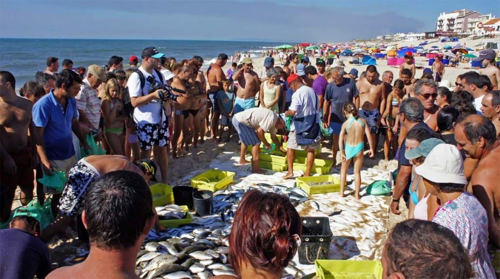 Visita Leiria: spiaggia Pedrogão