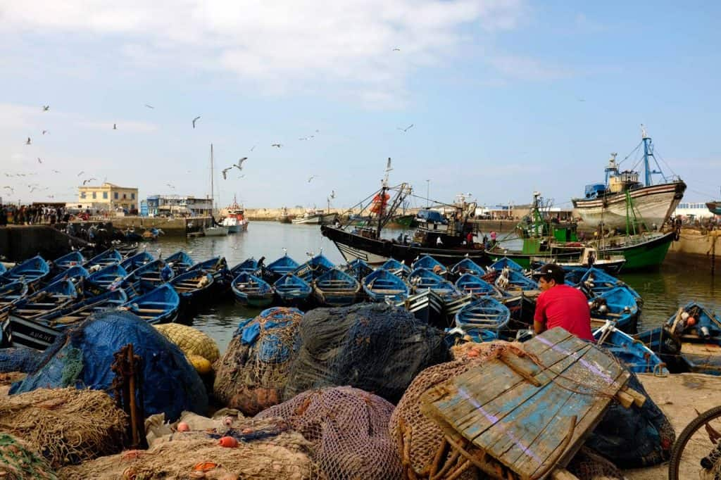 Barcos de pescas atracados no porto de Essaouira