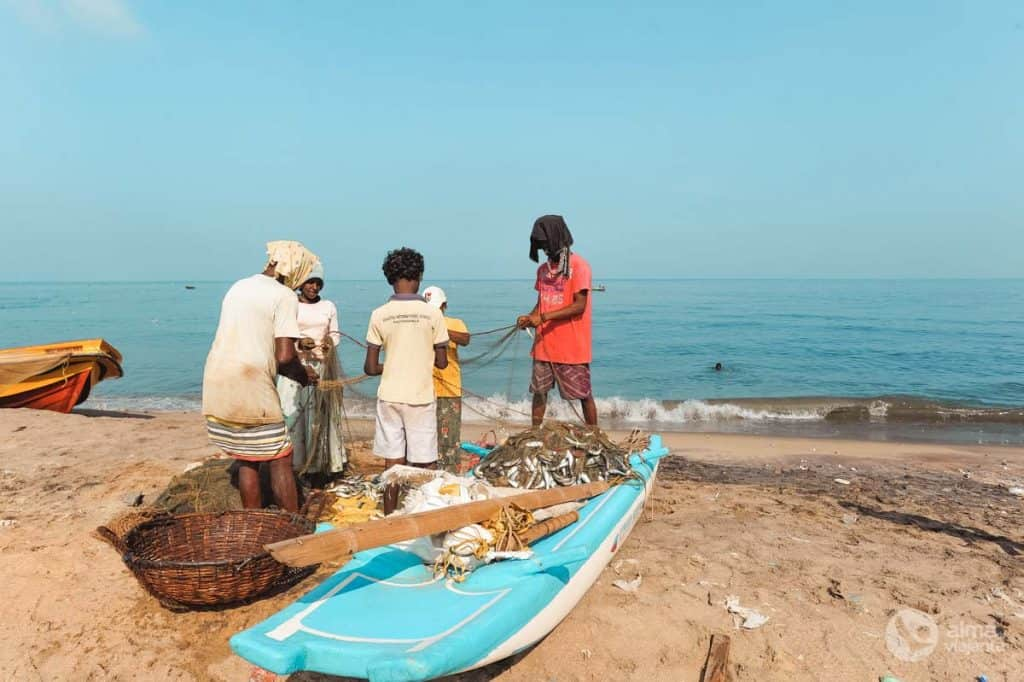 Redes de pesca, Negombo
