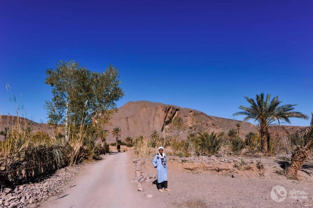 Visitar oásis Fint, Marrocos