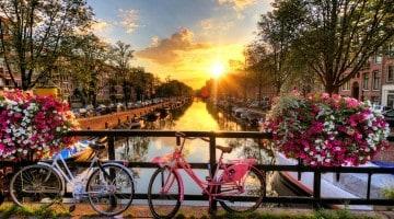 Blomster, kanaler og cykler i Amsterdam