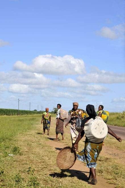 Estrada nacional a caminho do Bilene