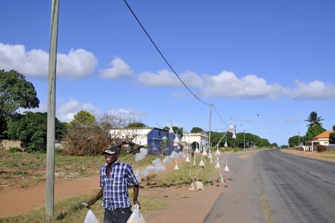 Vendedor de caju entre Maputo e Bilene, Moçambique