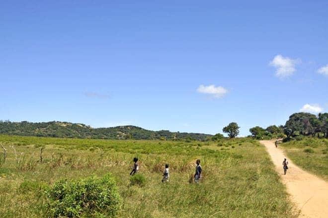Estrada nas proximidades do Zongoene