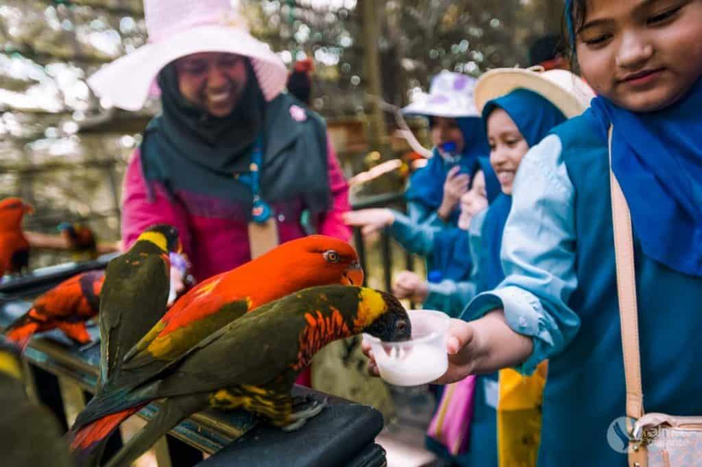 Bird Park de Kuala Lumpur