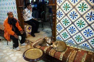 Chicha (kaljanas) ir katės yra dažnai Tuniso kavinėse