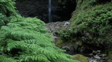 Madeira, Caldeirão de Beleza