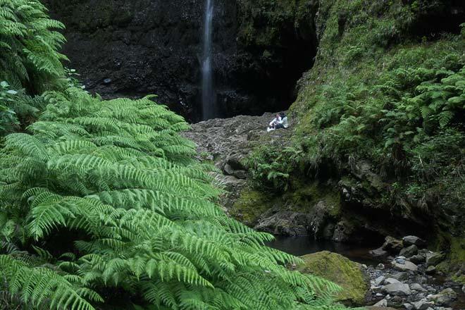Levada do Caldeirão Verde, Madeira