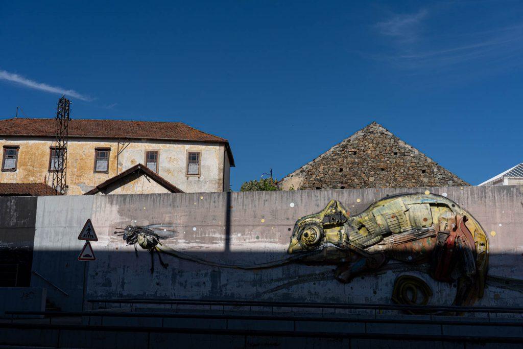 Street art: Camaleão, Bordalo II