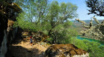 Uma bela caminhada no Parque Nacional Monfrague