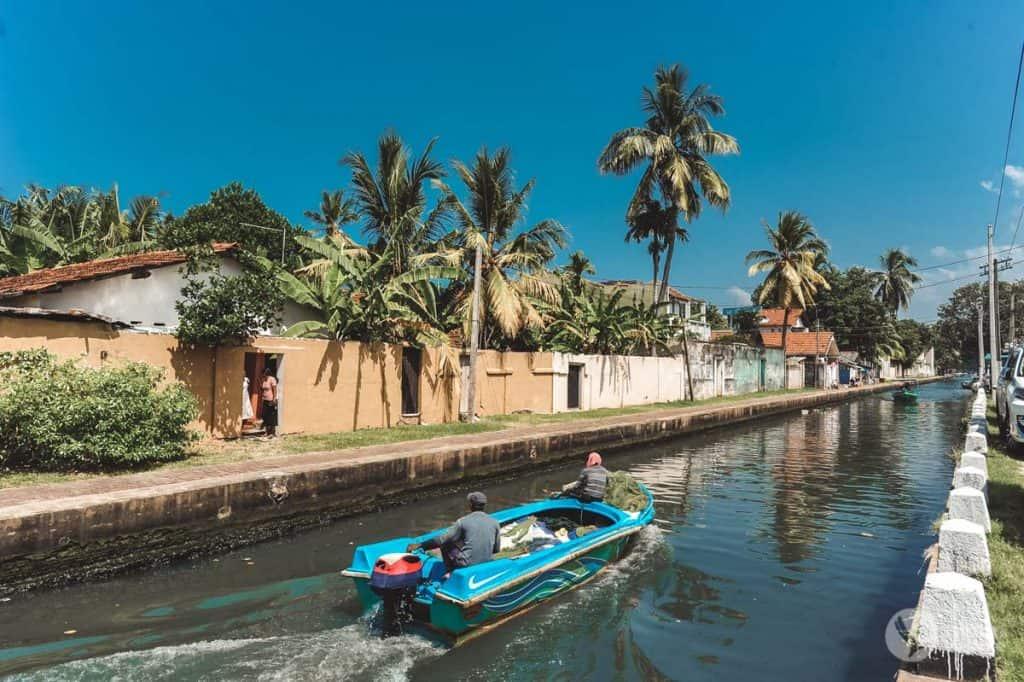 Canal Hamilton, Negombo