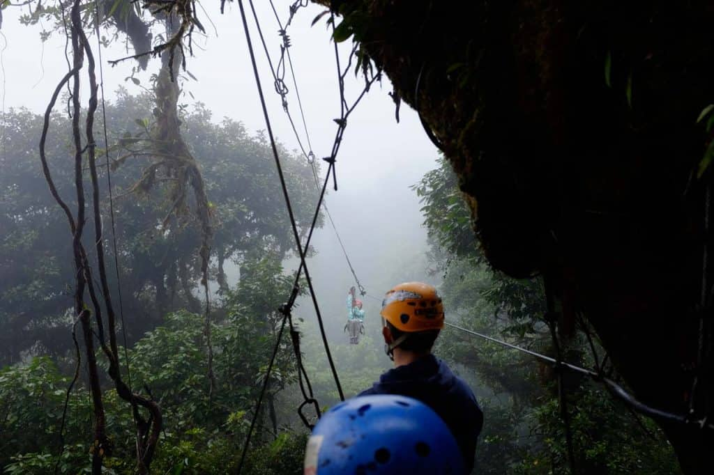 在蒙特维多,哥斯达黎加的树冠