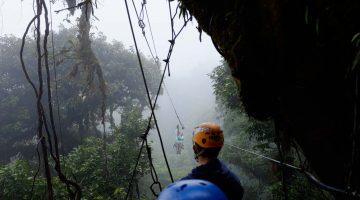 Voando entre as árvores em Monteverde