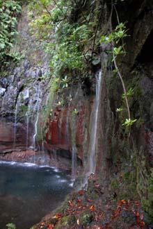 Cascata das 25 Fontes, ilha da Madeira