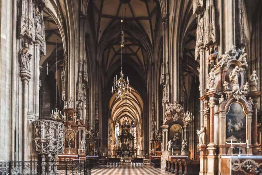 Vienos katedra