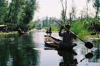 Agricultores nas suas hortas flutuantes em Srinagar