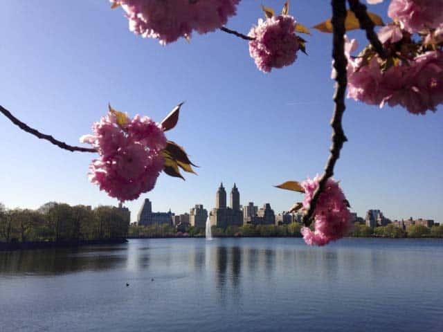Central Park v New Yorku na jar