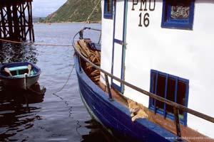 Pormenor de uma embarcação em Chiloé