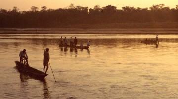 Chitwan, o último reduto da selva asiática