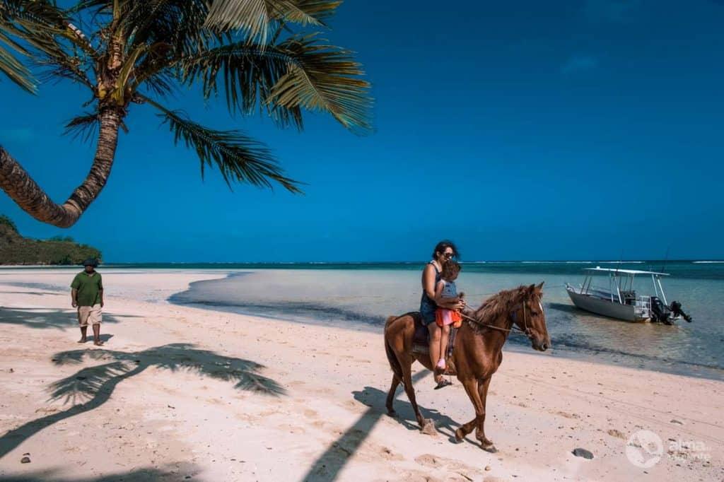 Ratsutamine Corali rannikul