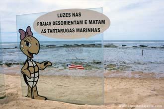Aviso colocado no areal da praia do Forte, Costa dos Coqueiros