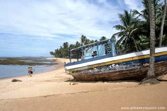 Vista da lindíssima Praia do Forte, Bahia