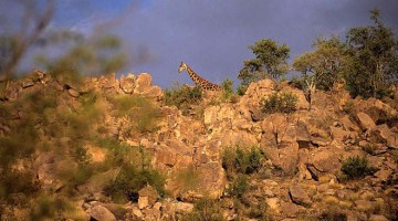 Namíbia, terra bendita