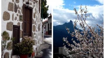 O que fazer em Gran Canária: as dicas da Patrícia Camargo