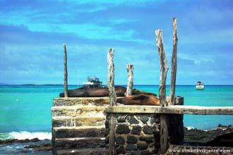 Puerto Ayora, na ilha de Santa Cruz, Galápagos