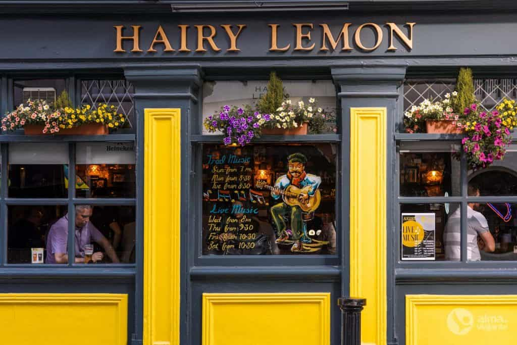 The Hairy Lemon, Dublin