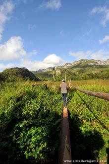 A caminho de Los Aquáticos, vale de Viñales