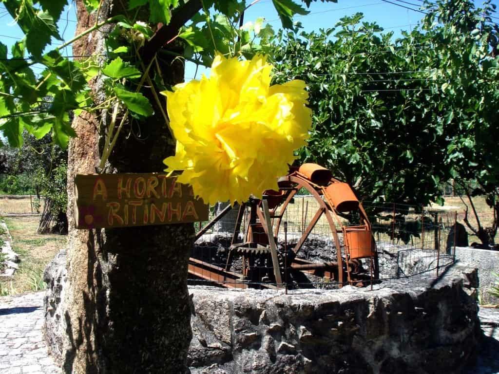 A Horta da Ritinha, Casa das Palmeiras