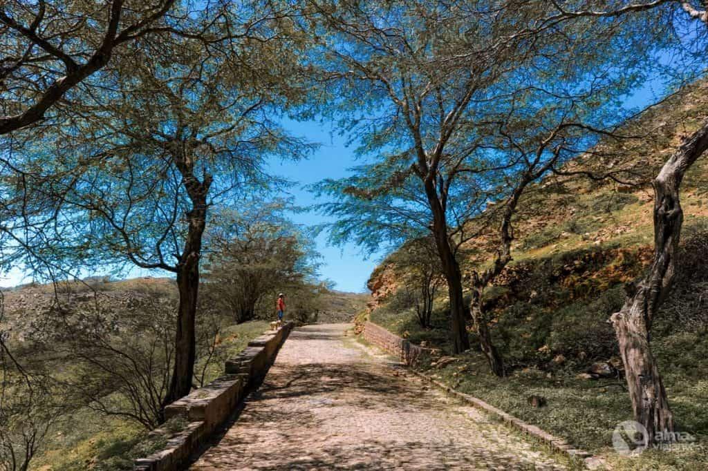 Estrada na ilha Brava, Cabo Verde